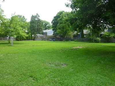Geneva Residential Lots & Land For Sale: 805 May Street