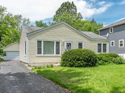 Downers Grove Single Family Home For Sale: 4342 Washington Street