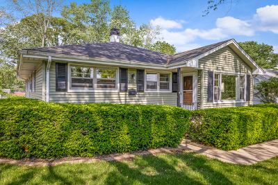 Mundelein Single Family Home For Sale: 211 Rouse Avenue