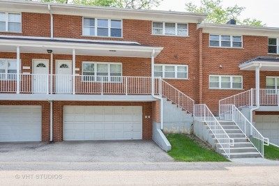 Palatine Condo/Townhouse For Sale: 167 East Palatine Road #H