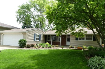 Buffalo Grove Single Family Home For Sale: 979 Beechwood Road