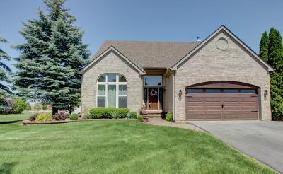 Bartlett Single Family Home For Sale: 227 Butler Drive