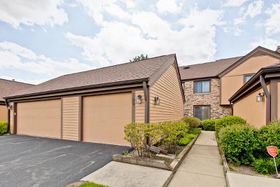 Buffalo Grove Condo/Townhouse For Sale: 1190 Franklin Lane