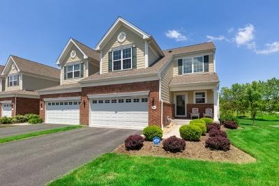 Elgin Condo/Townhouse For Sale: 1169 Falcon Ridge Drive