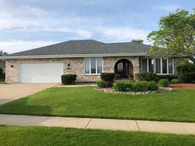 Homer Glen Single Family Home For Sale: 13447 Farm View Street