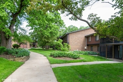 McHenry Condo/Townhouse For Sale: 4704 West Northfox Lane #8