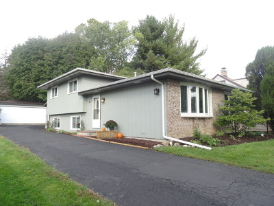 Winfield Single Family Home For Sale: S630 Jefferson Street