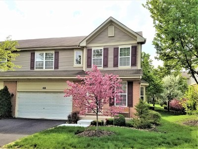 Palatine Condo/Townhouse For Sale: 48 North Englewood Court