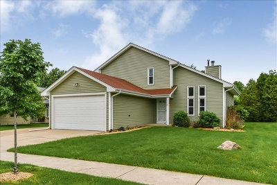 Joliet Single Family Home For Sale: 1118 Cathy Drive