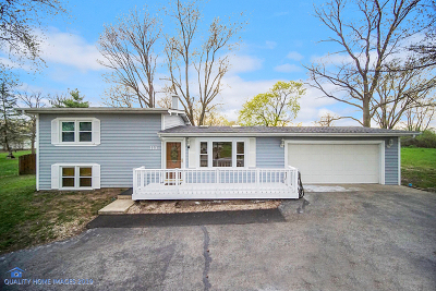 New Lenox Single Family Home For Sale: 113 William Street