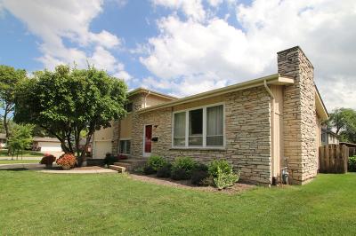 Palatine Single Family Home For Sale: 727 East Meadow Lane