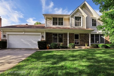 Libertyville Single Family Home For Sale: 242 Adler Drive