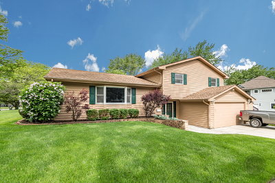 Naperville Single Family Home For Sale: 121 George Lane