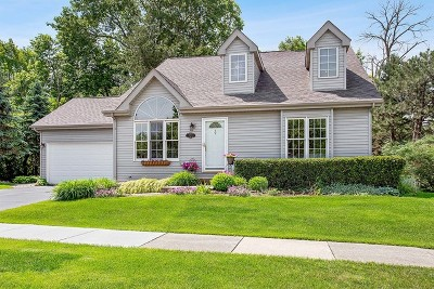 Lockport Single Family Home Contingent: 1223 East Wellwood Drive