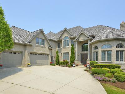 Vernon Hills Single Family Home For Sale: 1695 Pebble Beach Way