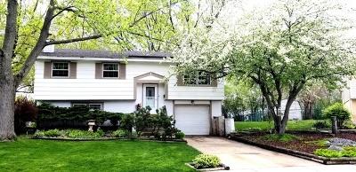Schaumburg Single Family Home For Sale: 810 Vassar Lane
