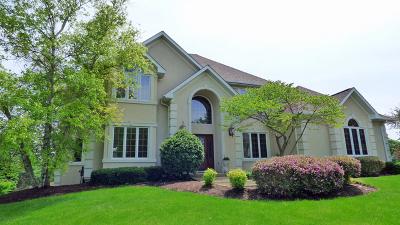 St. Charles Single Family Home For Sale: 38w015 Mallard Lake Road