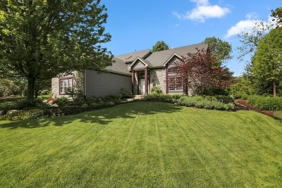 Lake Zurich Single Family Home For Sale: 1191 Rodgers Lane