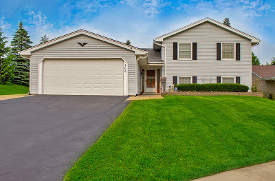 Hoffman Estates Single Family Home Price Change: 900 Rosedale Lane