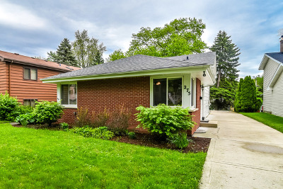 Glen Ellyn Single Family Home For Sale: 275 South Milton Avenue