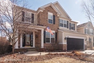 Montgomery Single Family Home For Sale: 2436 Prairie Crossing Drive