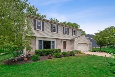 Roselle Single Family Home For Sale: 570 Dalton Lane