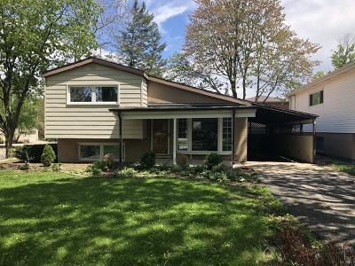 Glen Ellyn Single Family Home For Sale: 55 South Main Street