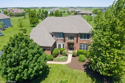 St. Charles Single Family Home For Sale: 43w698 Sunset Court