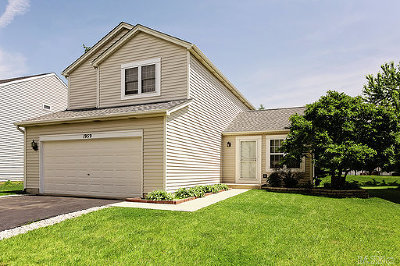 Romeoville Single Family Home For Sale: 1959 Somerset Drive