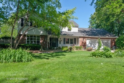 Naperville Single Family Home For Sale: 5s220 Eagle Street