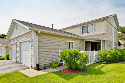 Schaumburg Condo/Townhouse For Sale: 750 Lakeview #99A