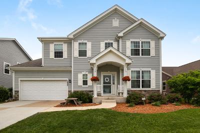 Elgin Single Family Home For Sale: 3485 Gallant Fox Drive