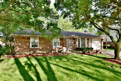 Streamwood Single Family Home Contingent: 517 Ridge Circle
