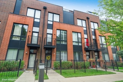 Chicago Condo/Townhouse New: 2344 West Wolfram Street #C