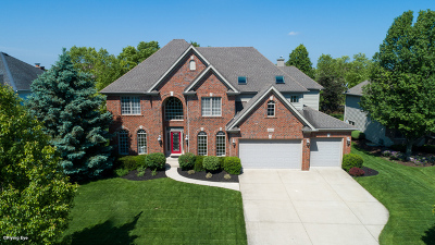 Naperville Single Family Home For Sale: 3647 Hector Lane