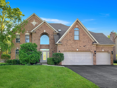 Plainfield Single Family Home For Sale: 11650 Liberty Lane