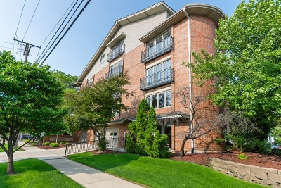 Oak Lawn Condo/Townhouse For Sale: 9201 South Kenton Avenue #2A