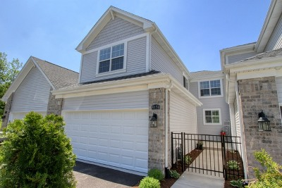 Lakewood Condo/Townhouse For Sale: 9174 Falcon Greens Drive