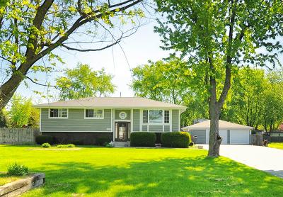Joliet Single Family Home For Sale: 2428 Von Esch Road