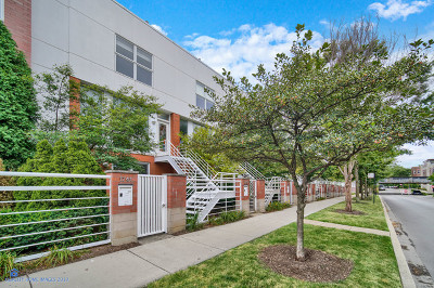 Chicago Condo/Townhouse New: 1741 West Wellington Avenue