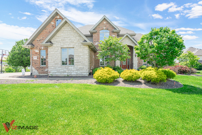 Frankfort Single Family Home For Sale: 8045 Nature Creek Court