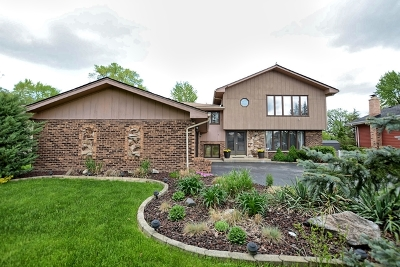 Orland Park Single Family Home For Sale: 14919 South 88th Avenue