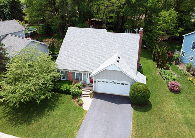 Lake Zurich Single Family Home For Sale: 914 Holly Circle