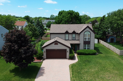 Lake Zurich Single Family Home For Sale: 515 Waterford Drive