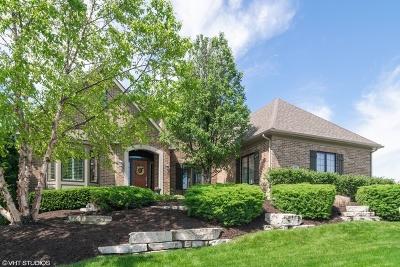 Elgin Single Family Home For Sale: 3691 Heathmoor Drive