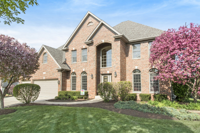 Naperville Single Family Home For Sale: 3644 Hector Lane