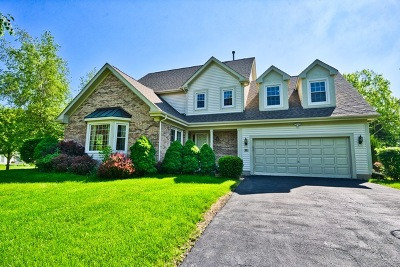 Vernon Hills Single Family Home For Sale: 61 South Brook Hill Lane
