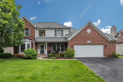 Naperville Single Family Home For Sale: 4608 Haviland Court