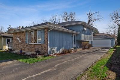 Warrenville Single Family Home For Sale: 3s621 Wilbur Avenue