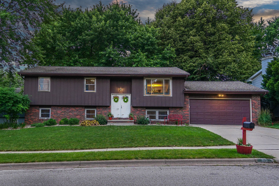 Normal Single Family Home For Sale: 315 Raleigh Court